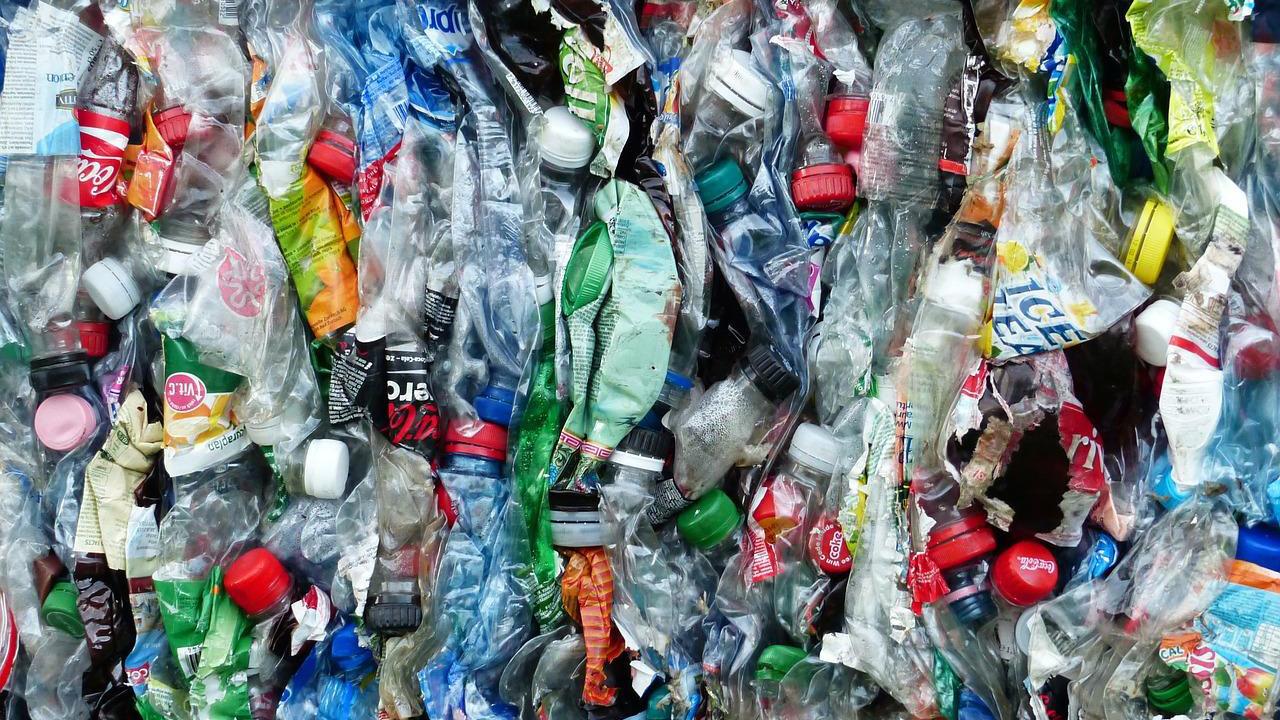 バイオプラスチックは環境問題の救世主?